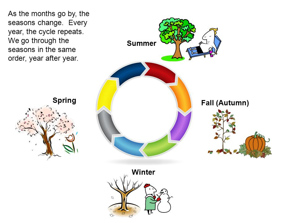 As the months go by, the seasons change. Every year, the cycle repeats