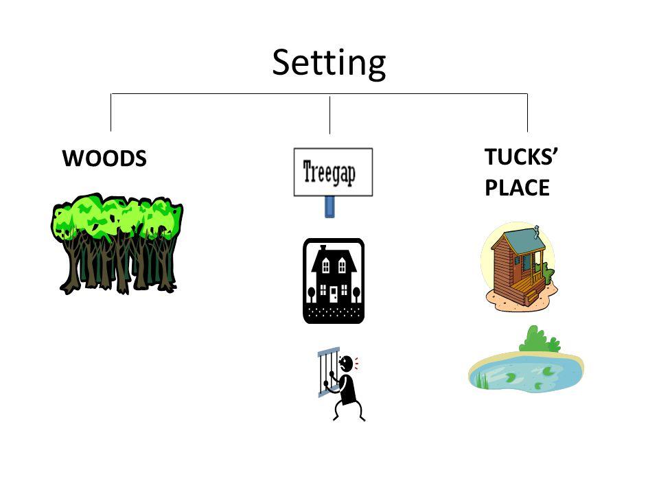 Setting WOODS TUCKS' PLACE