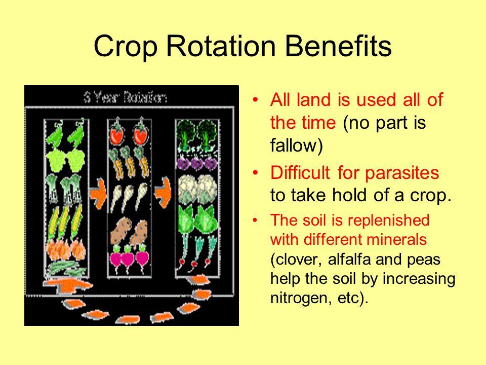 Crop Rotation Benefits