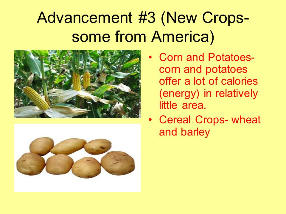 Advancement #3 (New Crops- some from America)