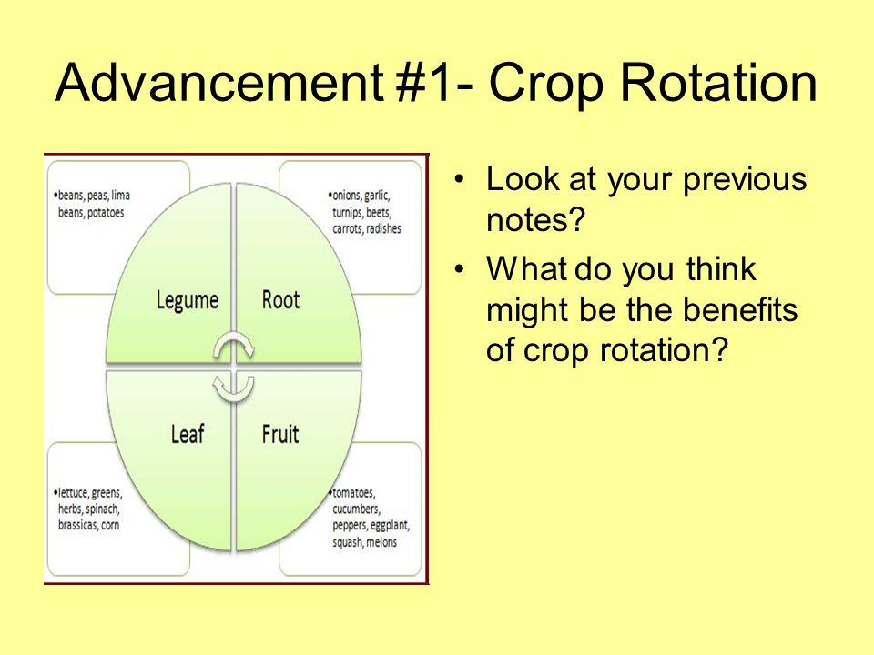 Advancement #1- Crop Rotation