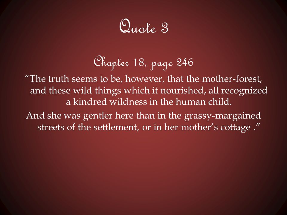 Quote 3 Chapter 18, page 246.