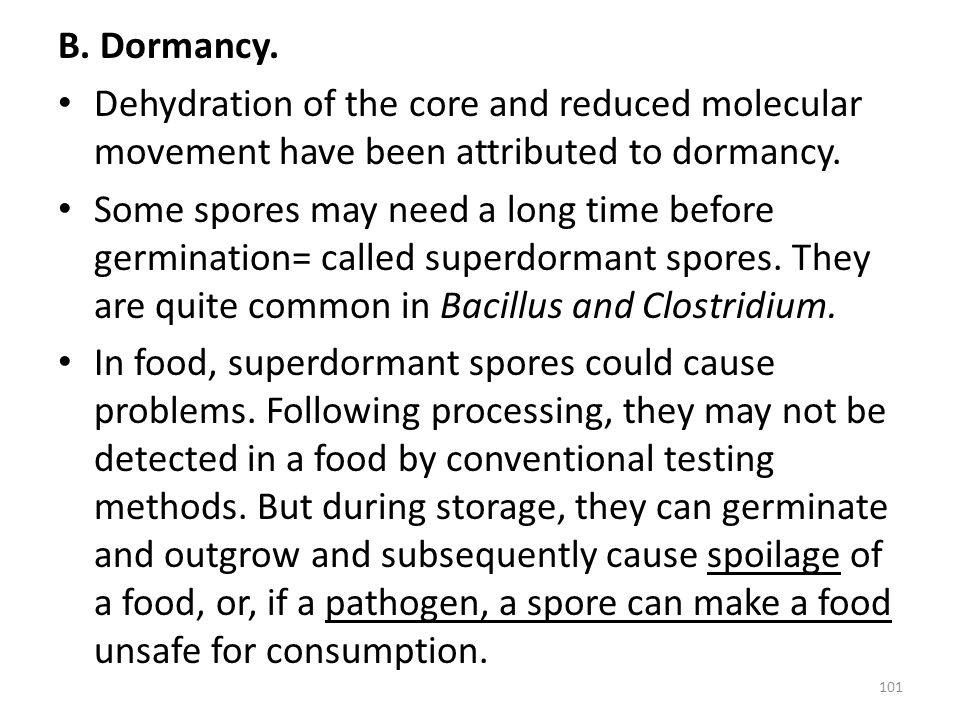 B. Dormancy. Dehydration of the core and reduced molecular movement have been attributed to dormancy.
