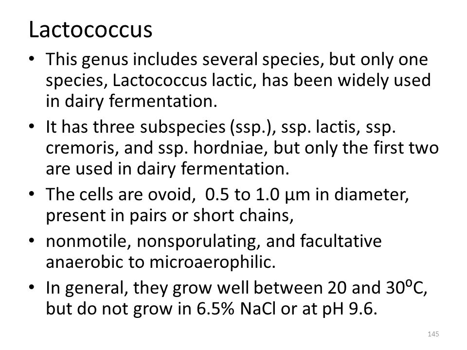 Lactococcus This genus includes several species, but only one species, Lactococcus lactic, has been widely used in dairy fermentation.