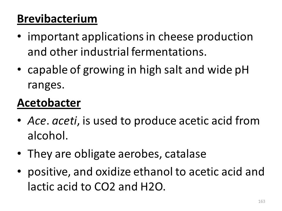Brevibacterium important applications in cheese production and other industrial fermentations. capable of growing in high salt and wide pH ranges.
