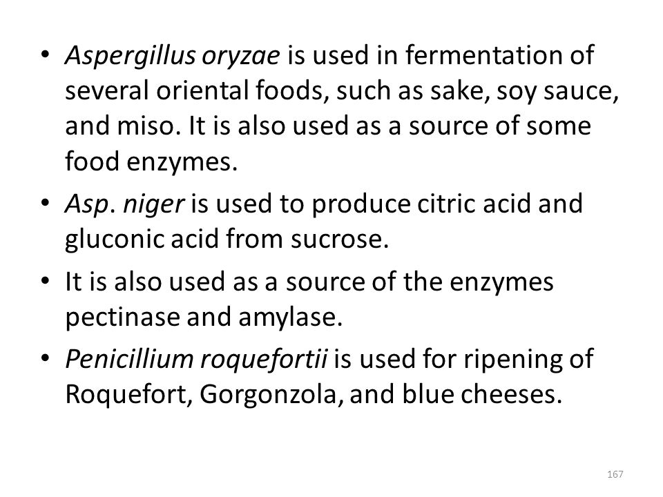Aspergillus oryzae is used in fermentation of several oriental foods, such as sake, soy sauce, and miso. It is also used as a source of some food enzymes.