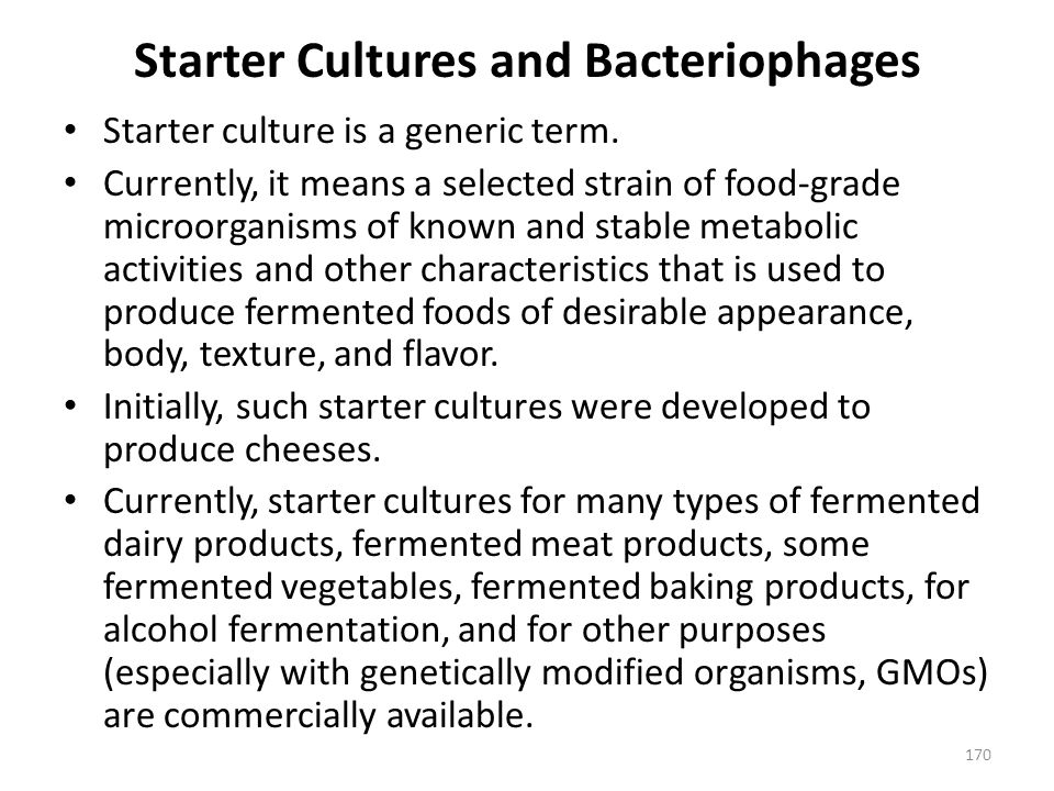 Starter Cultures and Bacteriophages