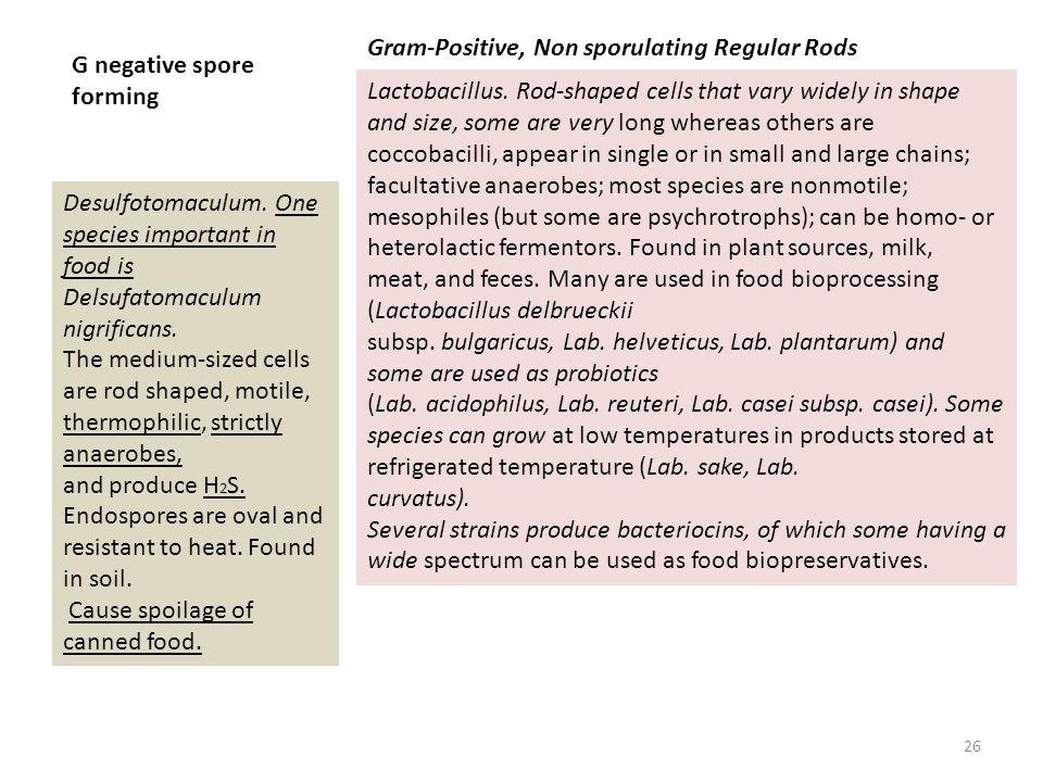 Gram-Positive, Non sporulating Regular Rods