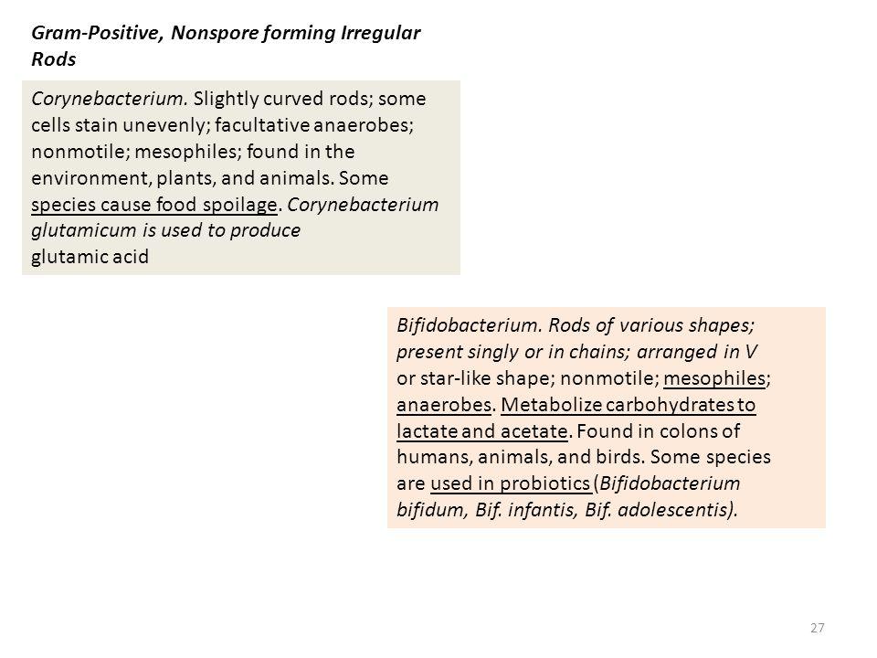 Gram-Positive, Nonspore forming Irregular Rods