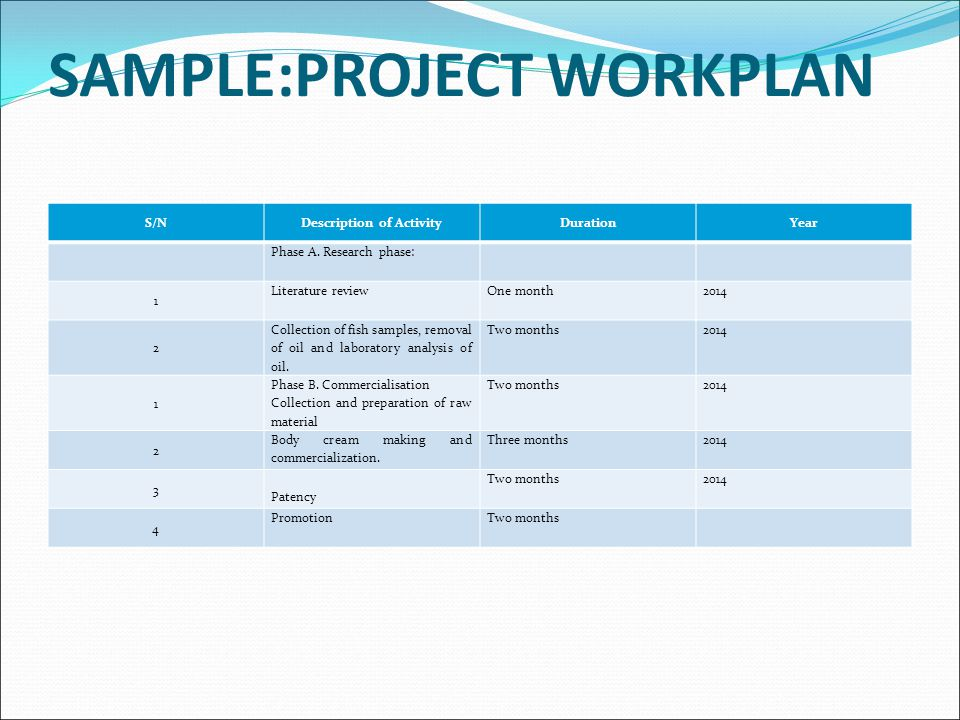 SAMPLE:PROJECT WORKPLAN