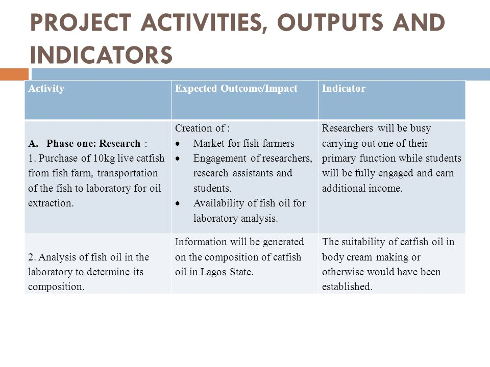 PROJECT ACTIVITIES, OUTPUTS AND INDICATORS