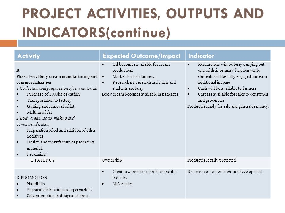 PROJECT ACTIVITIES, OUTPUTS AND INDICATORS(continue)