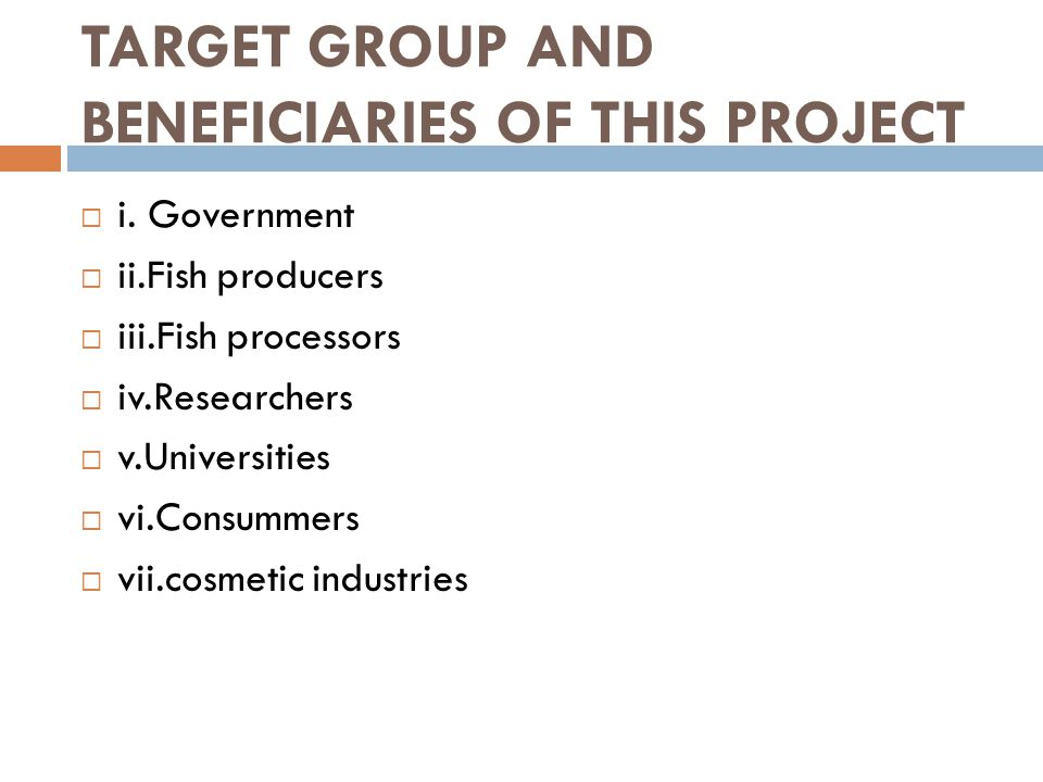 THE KEY STAKEHOLDERS, TARGET GROUP AND BENEFICIARIES OF THIS PROJECT