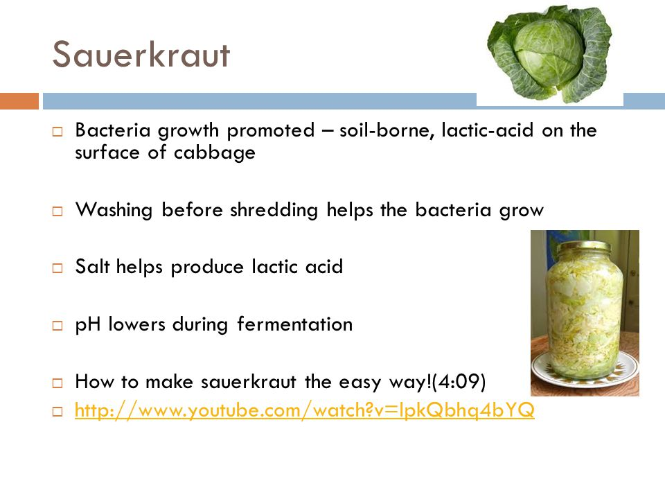 Sauerkraut Bacteria growth promoted – soil-borne, lactic-acid on the surface of cabbage. Washing before shredding helps the bacteria grow.