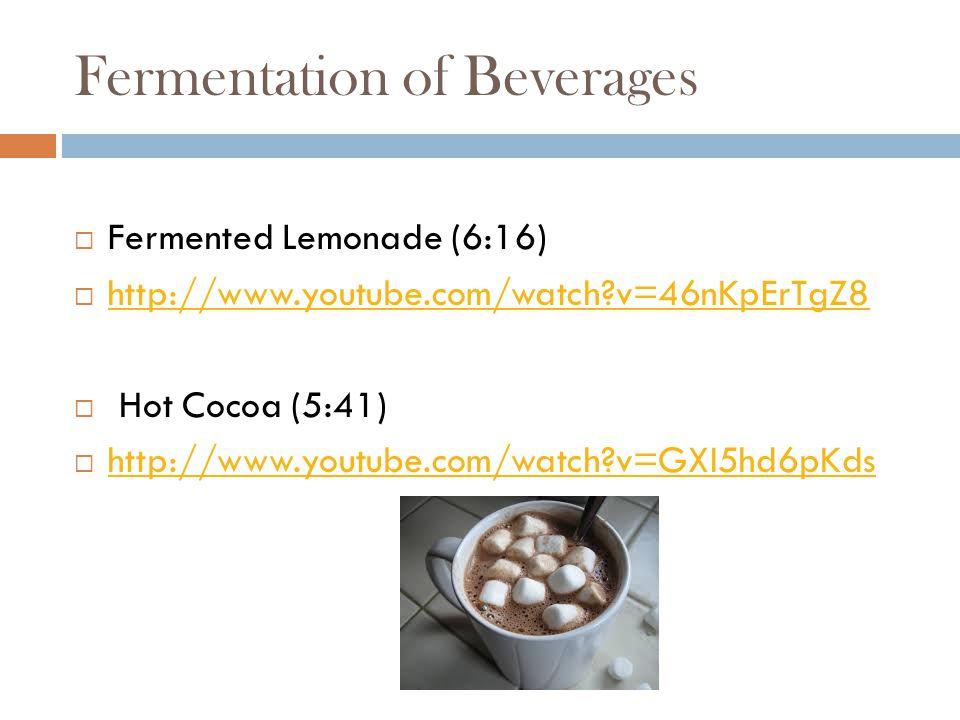 Fermentation of Beverages