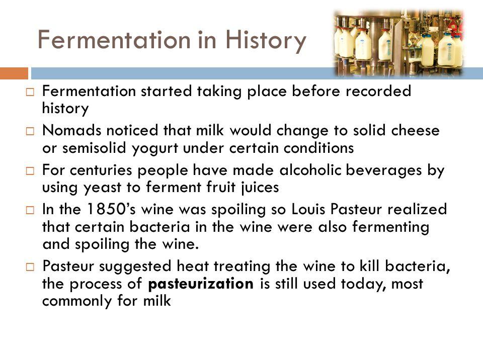 Fermentation in History