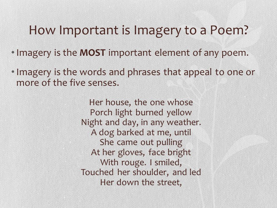 How Important is Imagery to a Poem
