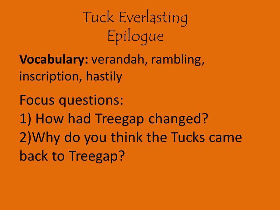 1) How had Treegap changed