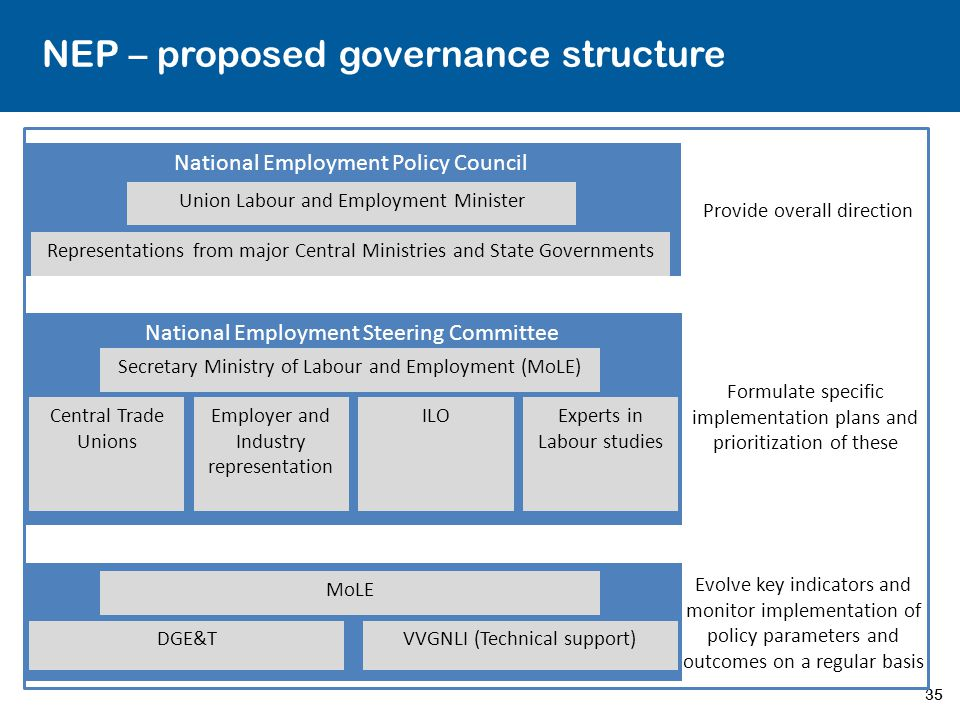 NEP – proposed governance structure