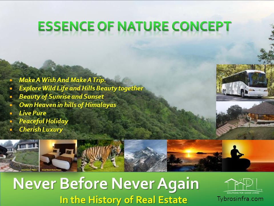 Essence of Nature Concept