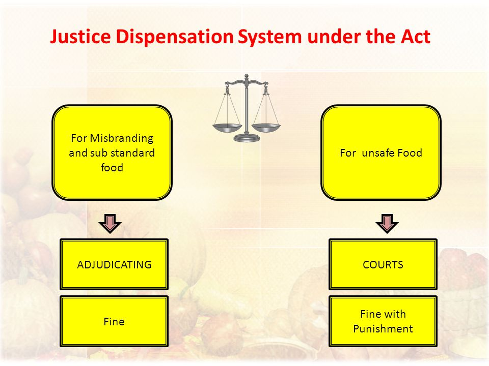 Justice Dispensation System under the Act