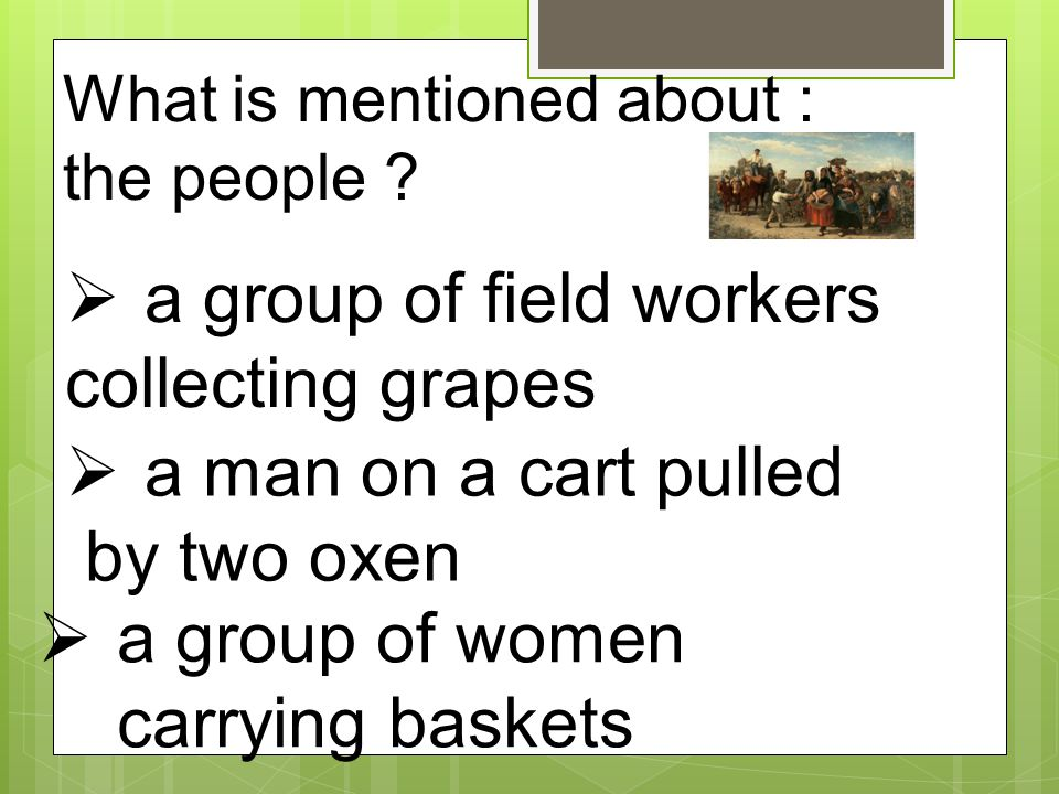 a group of field workers collecting grapes