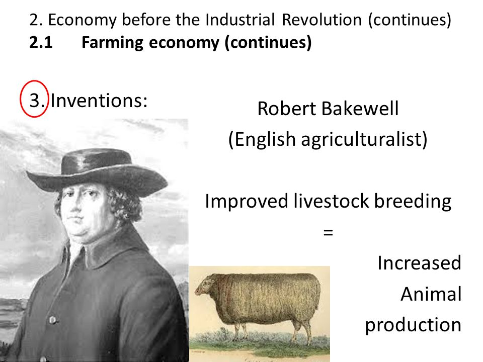(English agriculturalist) Improved livestock breeding = Increased