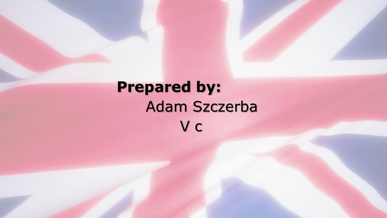 Prepared by: Adam Szczerba V c