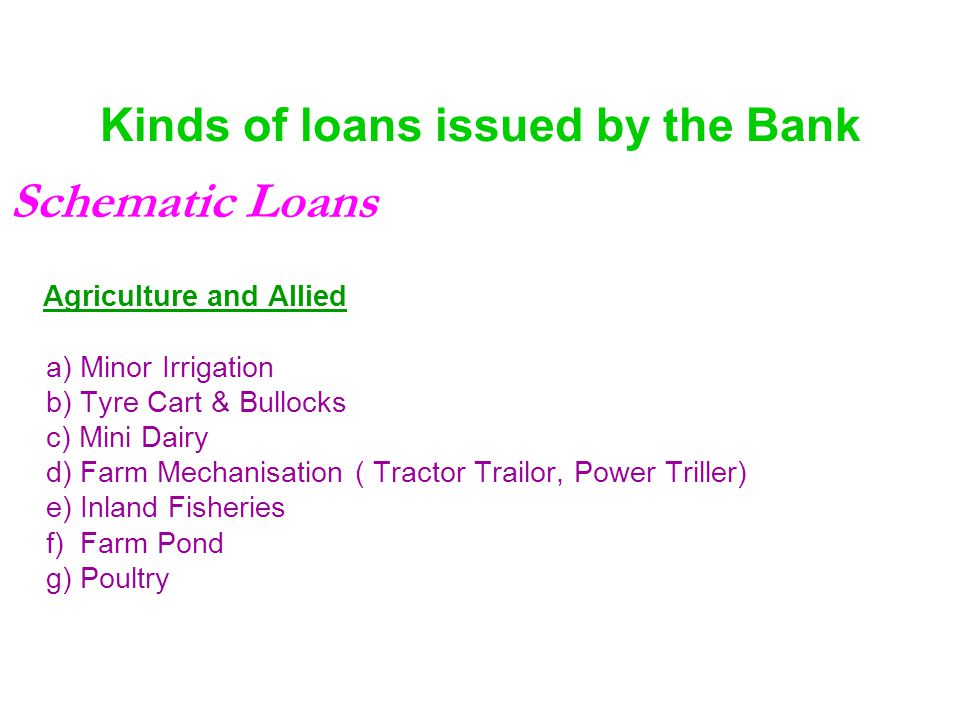 Kinds of loans issued by the Bank