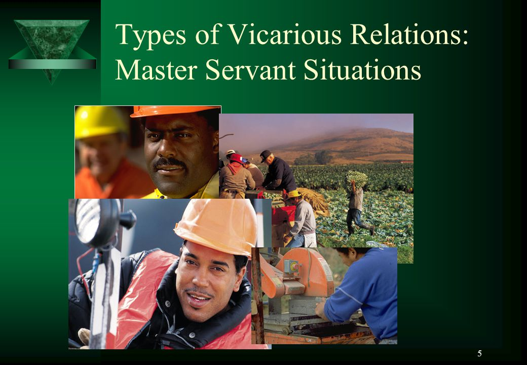 Types of Vicarious Relations: Master Servant Situations