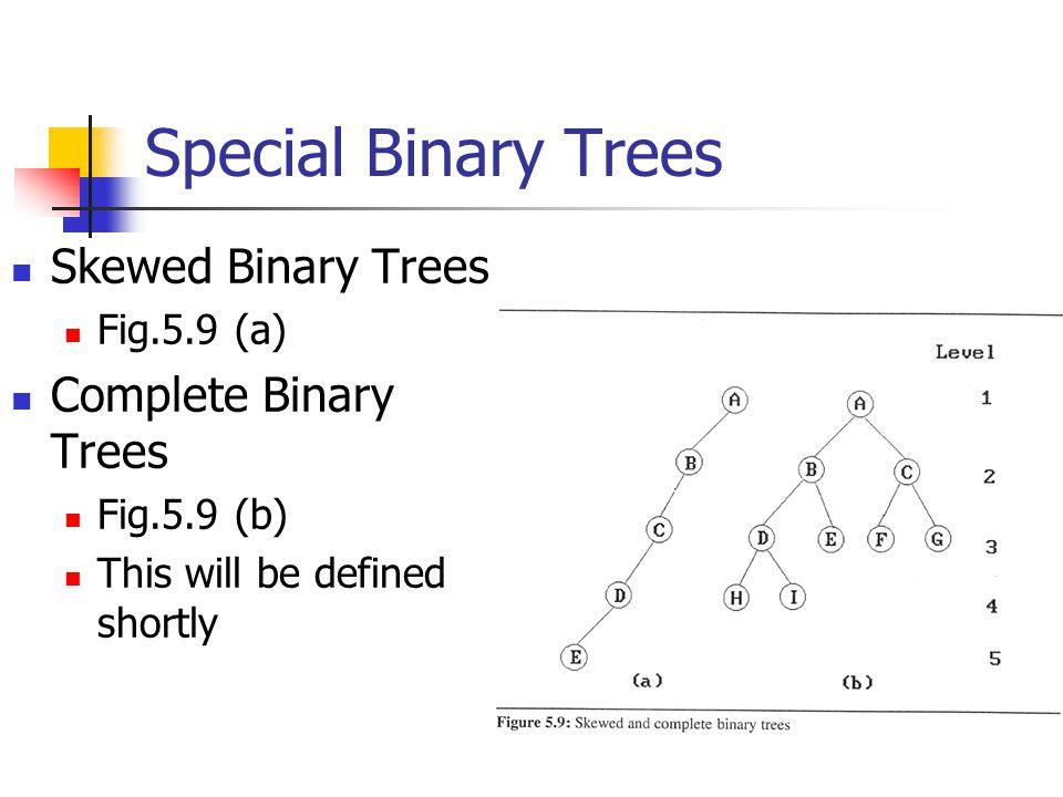 Special Binary Trees Skewed Binary Trees Complete Binary Trees