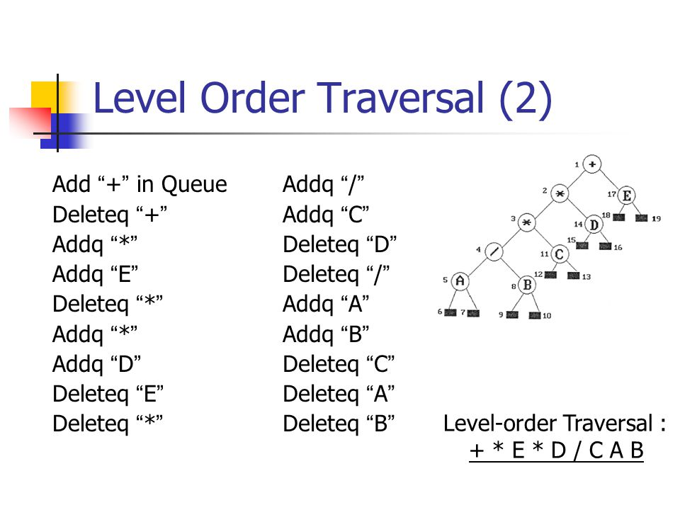 Level Order Traversal (2)