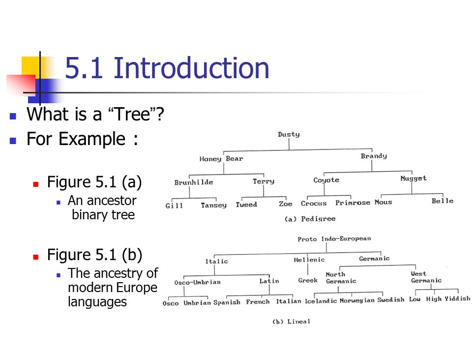 5.1 Introduction What is a Tree For Example : Figure 5.1 (a)