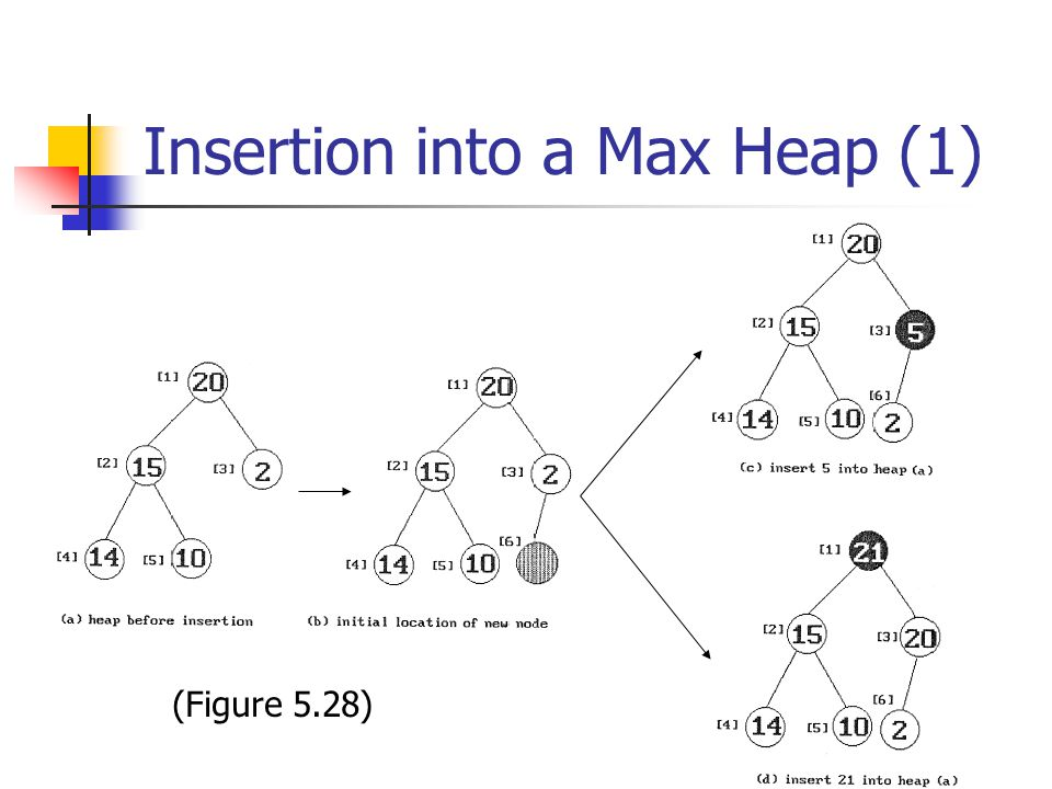 Insertion into a Max Heap (1)