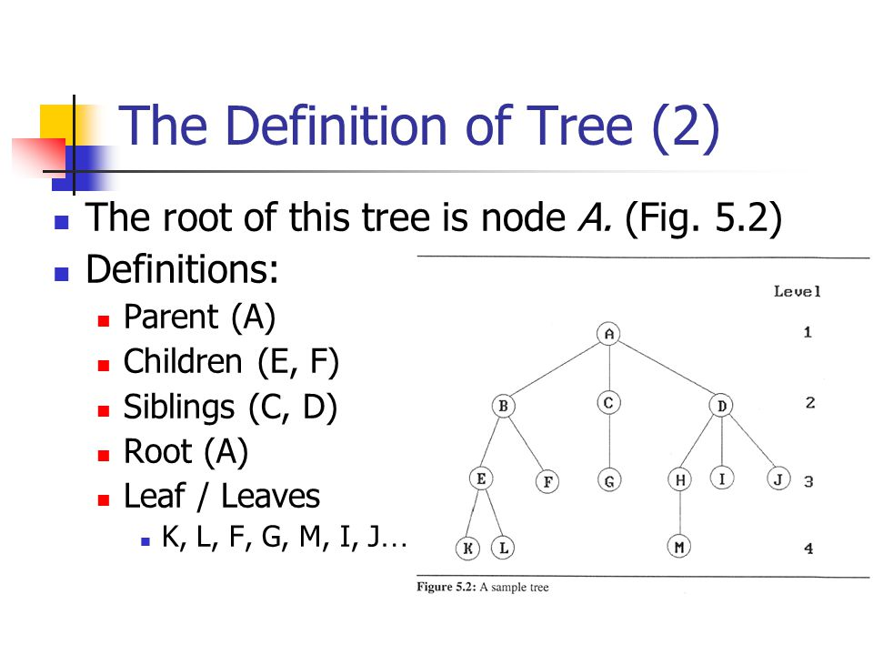 The Definition of Tree (2)
