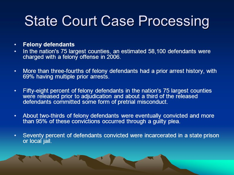 State Court Case Processing