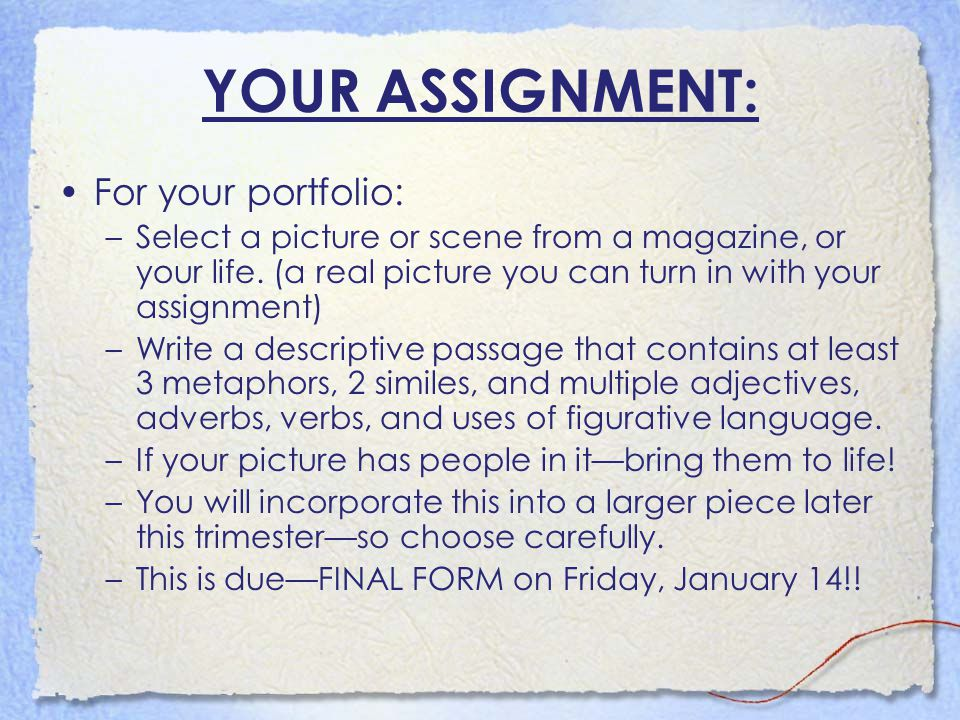YOUR ASSIGNMENT: For your portfolio: