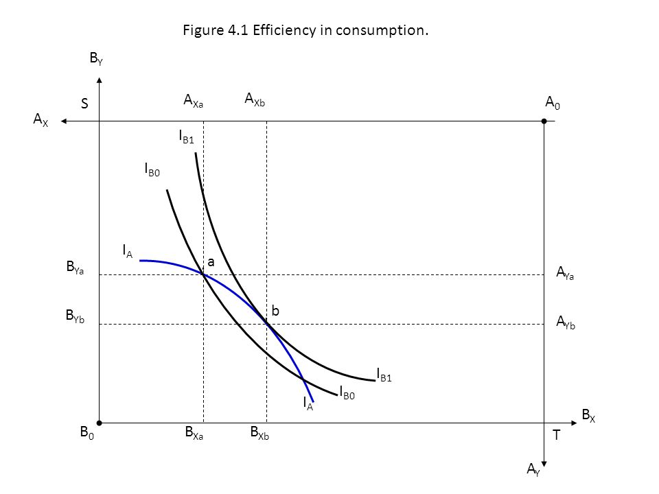 Figure 4.1 Efficiency in consumption.