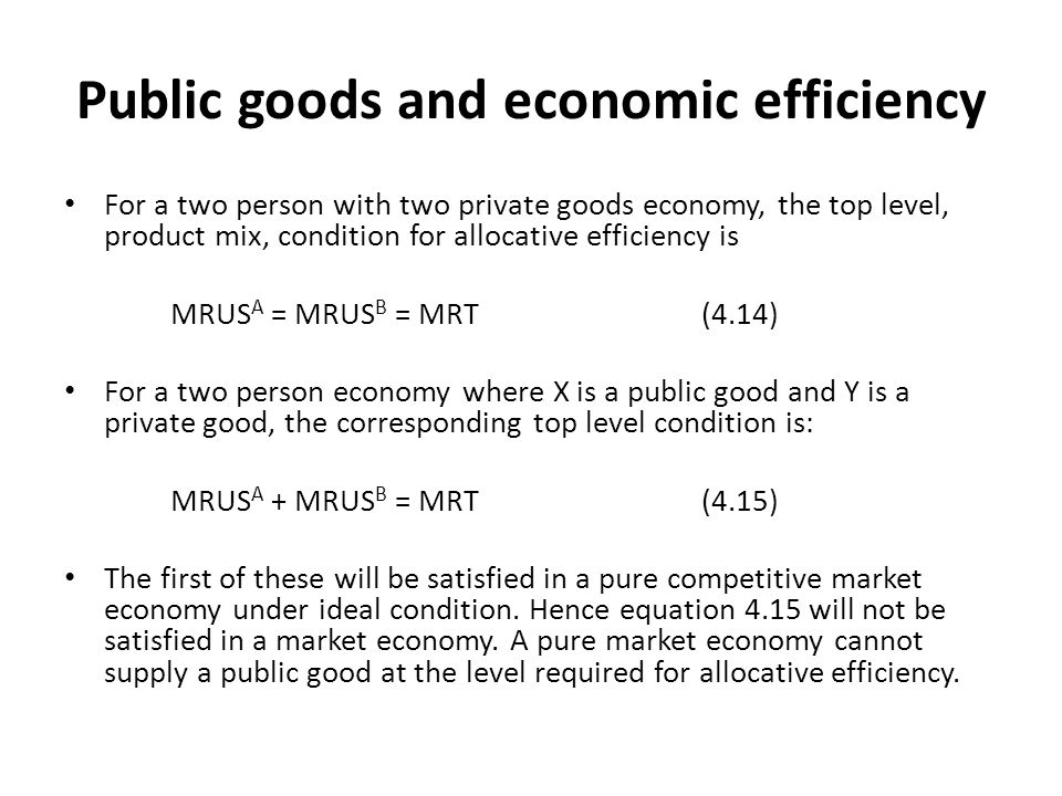 Public goods and economic efficiency