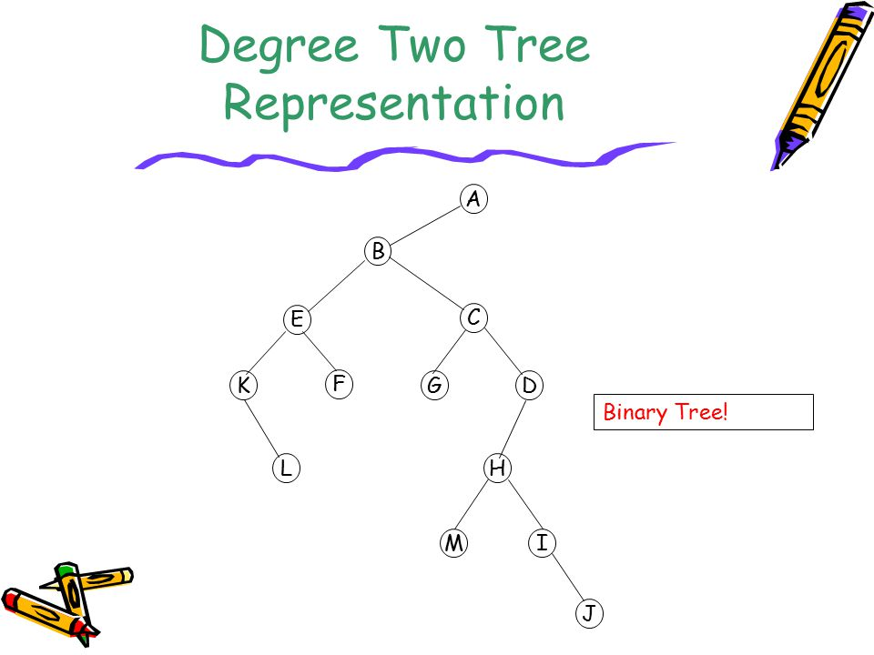 Degree Two Tree Representation