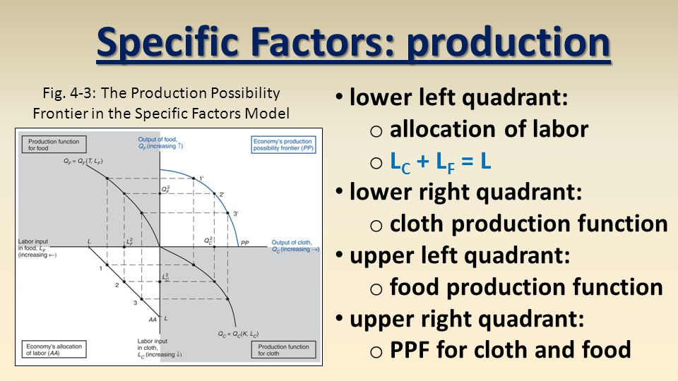 Specific Factors: production