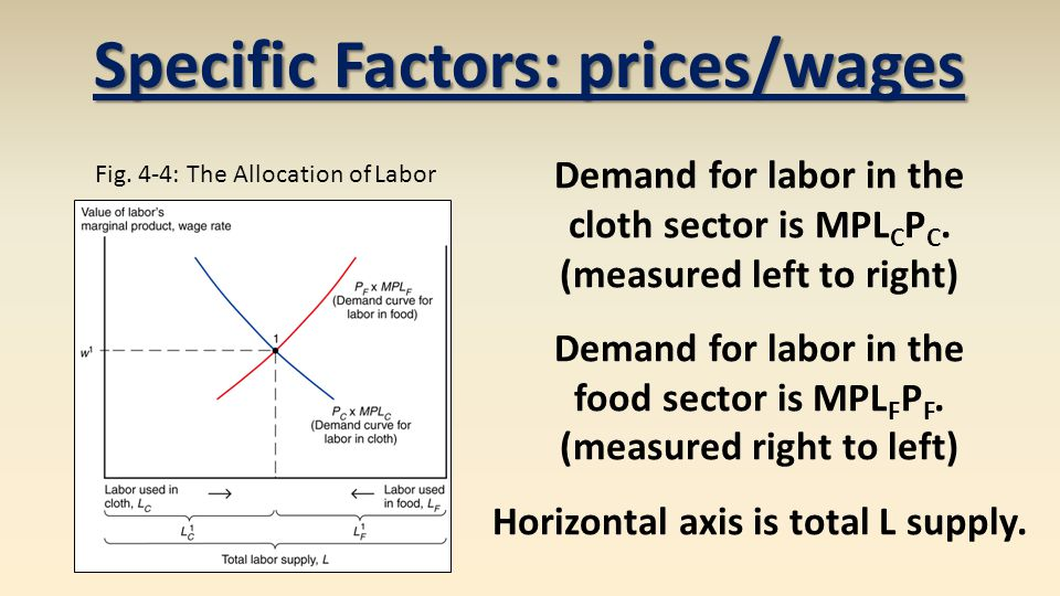 Specific Factors: prices/wages
