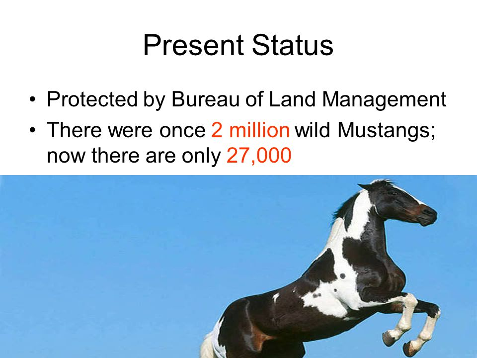 Present Status Protected by Bureau of Land Management