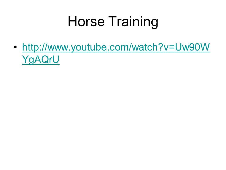 Horse Training http://www.youtube.com/watch v=Uw90WYgAQrU