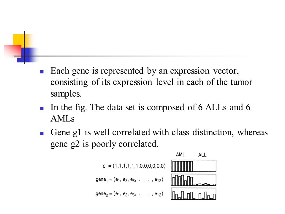 Each gene is represented by an expression vector, consisting of its expression level in each of the tumor samples.
