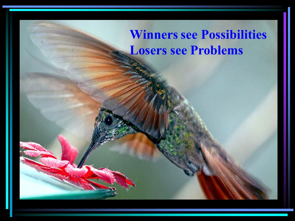 Winners see Possibilities