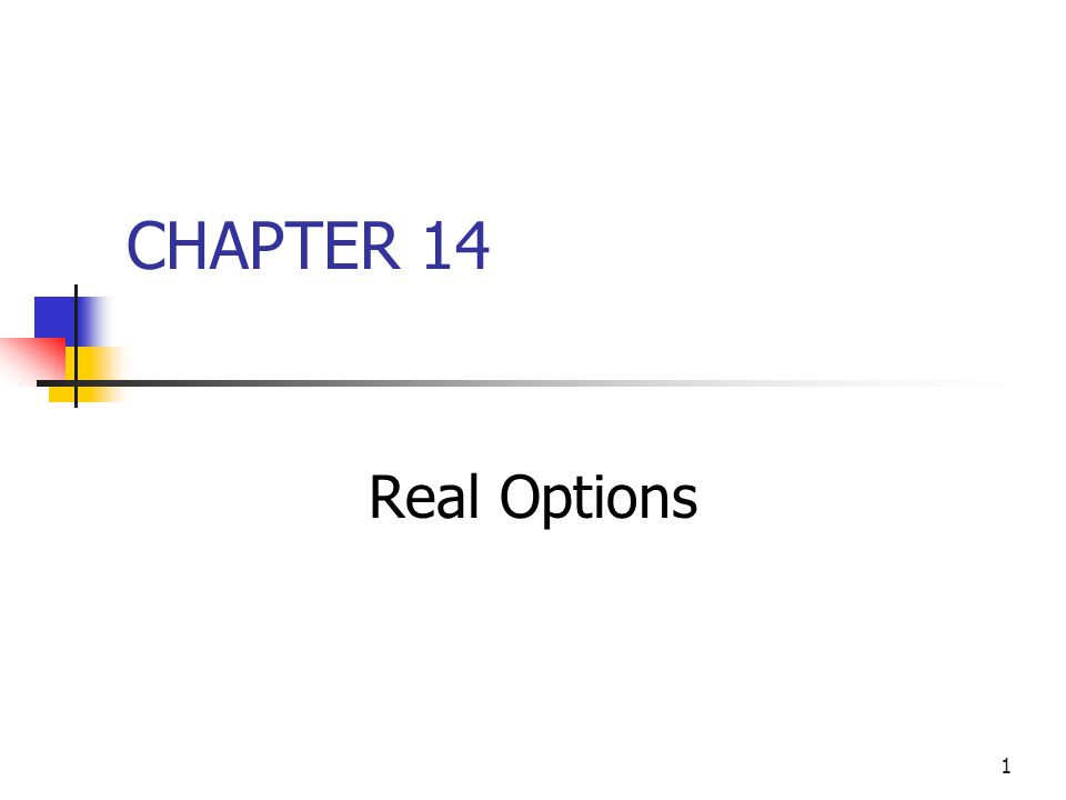 CHAPTER 14 Real Options
