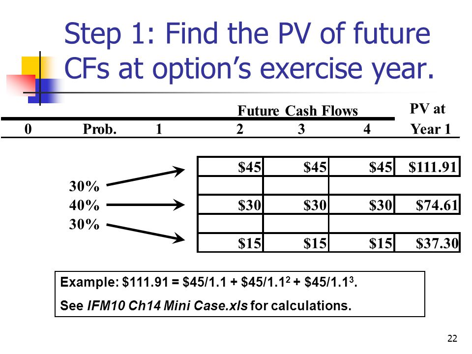 Step 1: Find the PV of future CFs at option's exercise year.