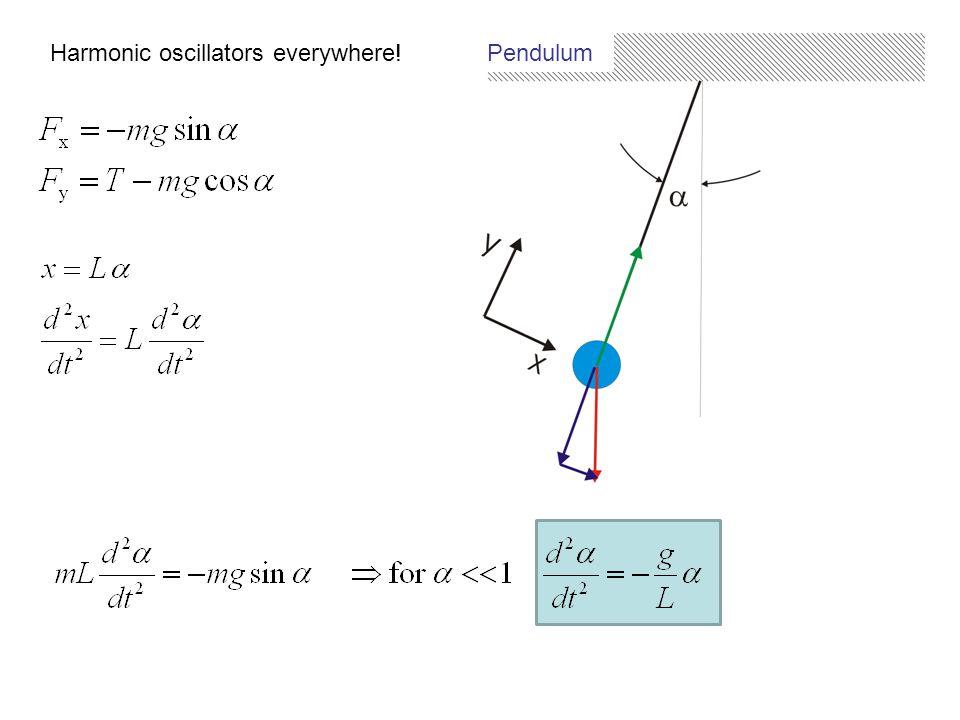 Harmonic oscillators everywhere! Pendulum