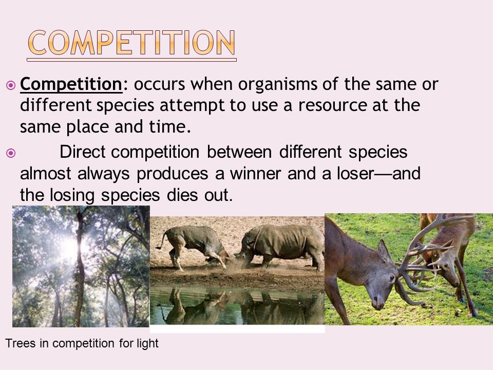 Competition Competition: occurs when organisms of the same or different species attempt to use a resource at the same place and time.